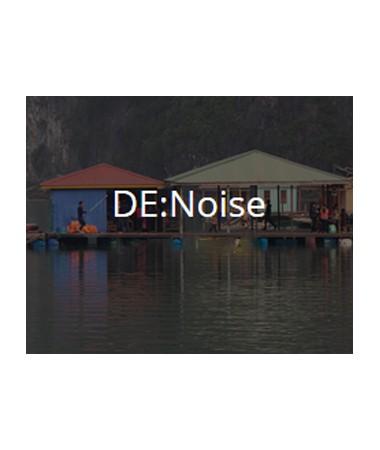 revision_denoise