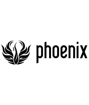 chaosgroup_phoenix_fd