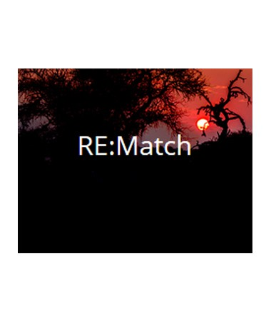 revision_rematch