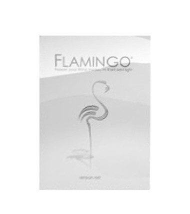 mcneel_flamingo