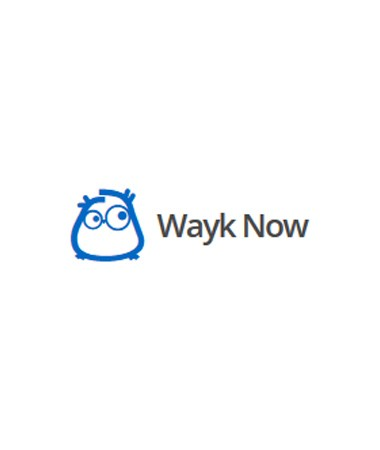 Wayk Now Enterprise Subscription (Miet-Lizenz) - Single User License - 12 Monate