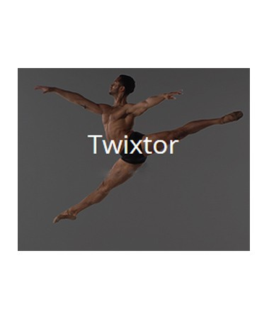 revision_twixtor