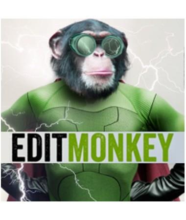 ebberts-zucker-edit-monkey