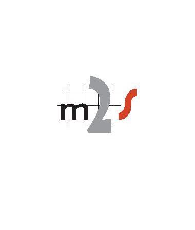 Mesh2Surface_Logo